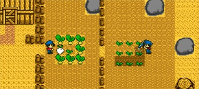 Harvest Moon GB (3)
