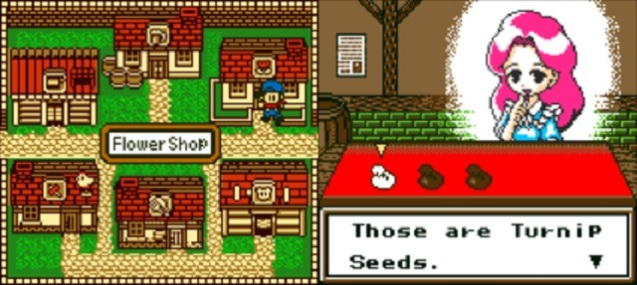 Harvest Moon GB (4)
