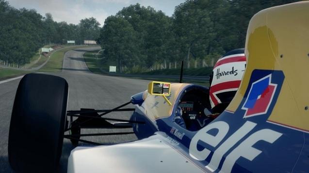 F1 2013 (2)