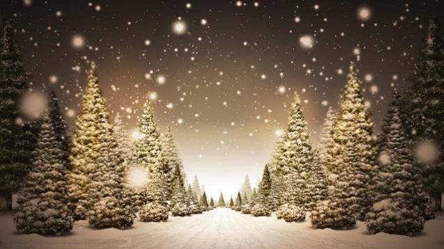 Wir wünschen euch frohe Weihnachten 2014