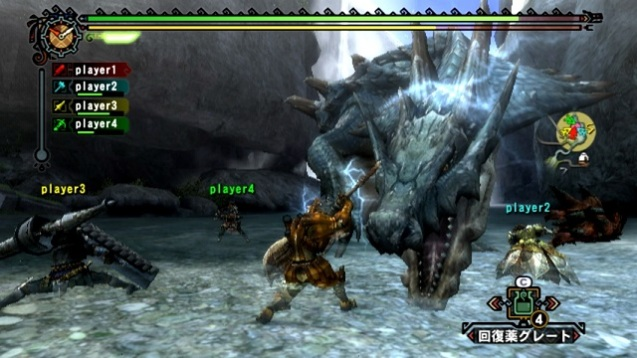 Faszination Monster Hunter (5)
