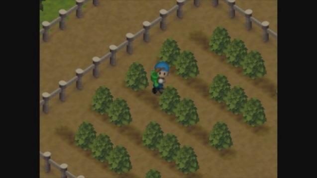 harvest-moon-64-3